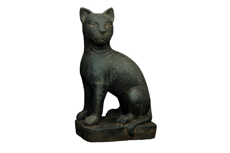 CHAT ASSIS 45CM
